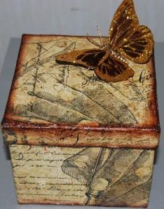 Fjärilsbox1