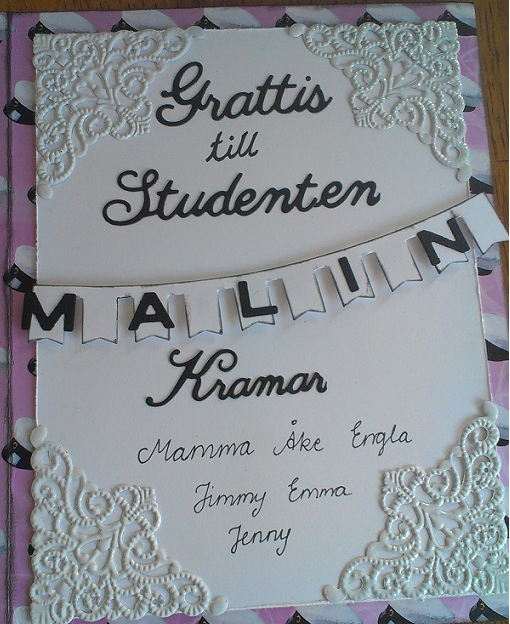 StudentMalin4